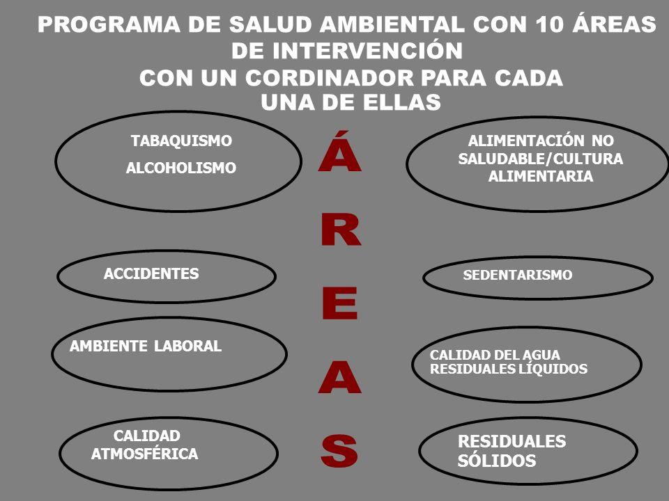 ÁREAS PROGRAMA DE SALUD AMBIENTAL CON 10 ÁREAS DE INTERVENCIÓN