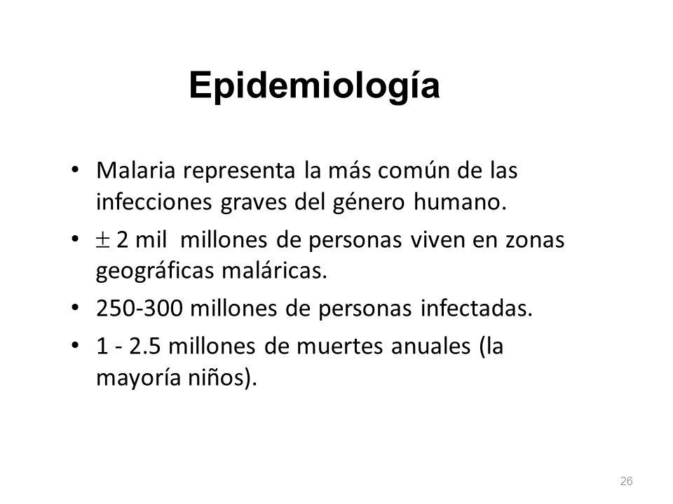 Epidemiología Malaria representa la más común de las infecciones graves del género humano.