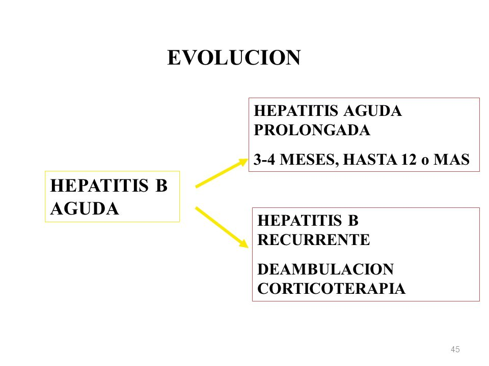 EVOLUCION HEPATITIS B AGUDA HEPATITIS AGUDA PROLONGADA