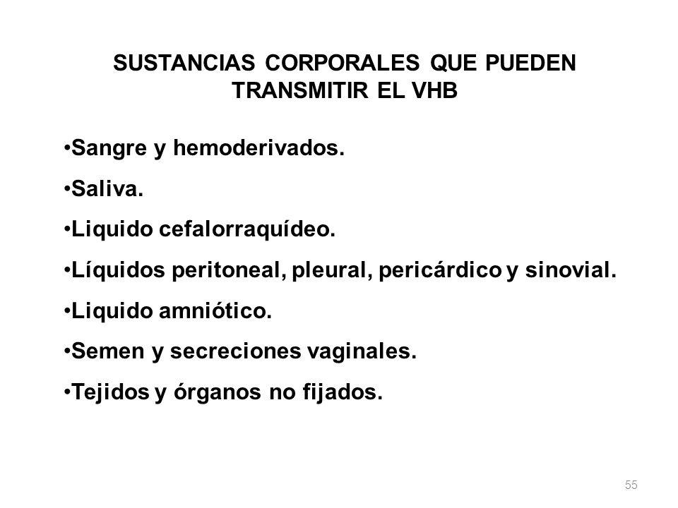 SUSTANCIAS CORPORALES QUE PUEDEN TRANSMITIR EL VHB