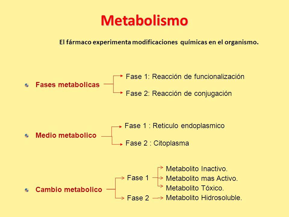 Metabolismo El fármaco experimenta modificaciones químicas en el organismo. Fase 1: Reacción de funcionalización.