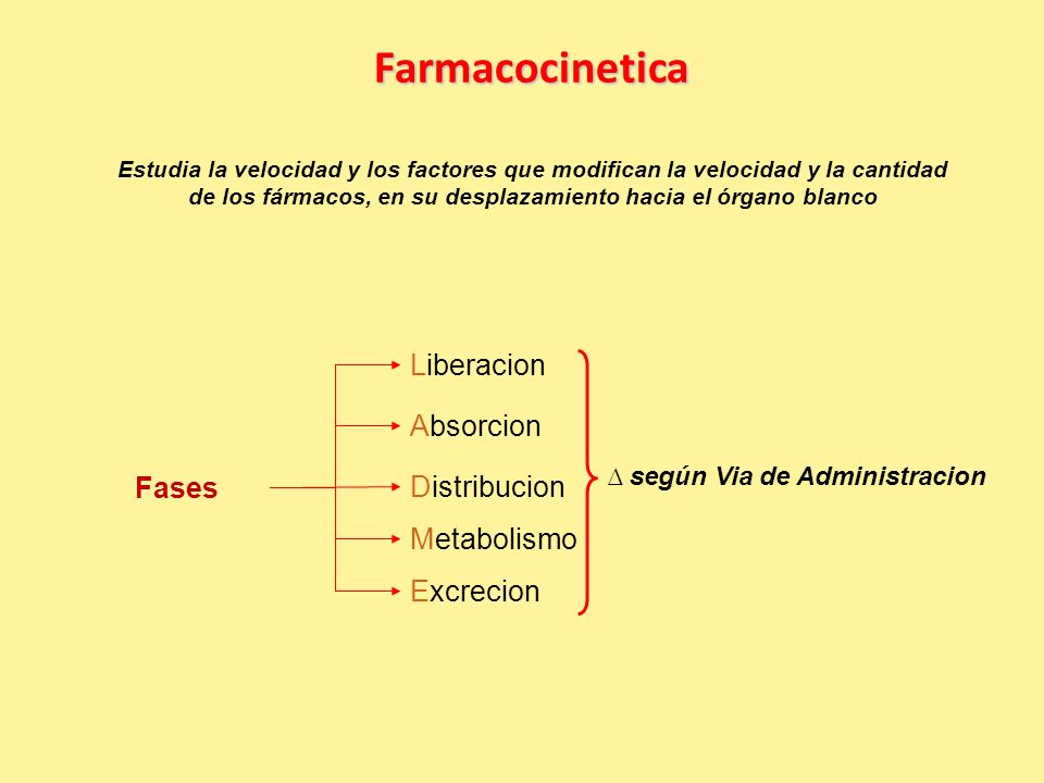 Farmacocinetica Liberacion Absorcion Fases Distribucion Metabolismo