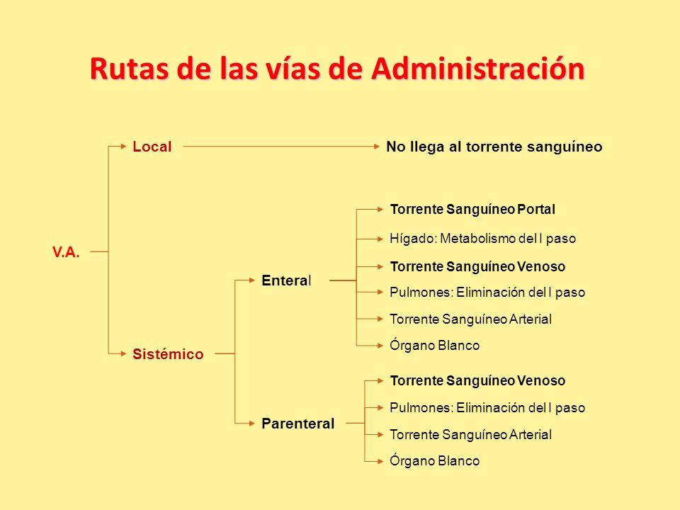 Rutas de las vías de Administración