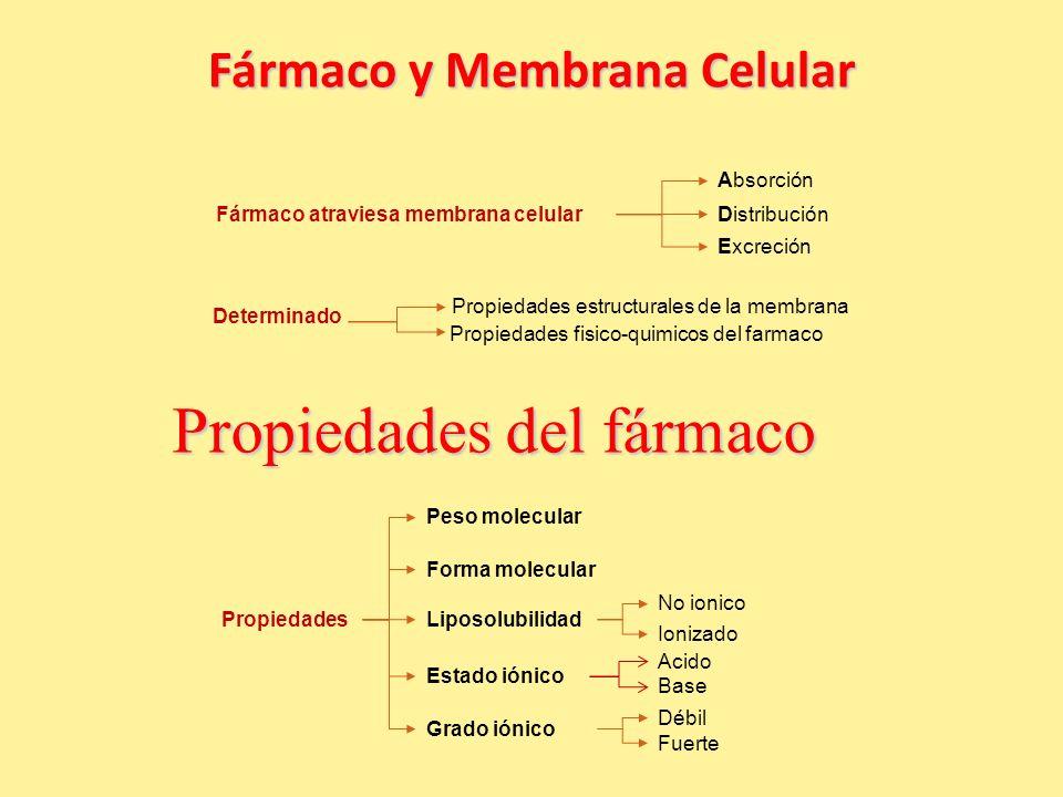 Fármaco y Membrana Celular