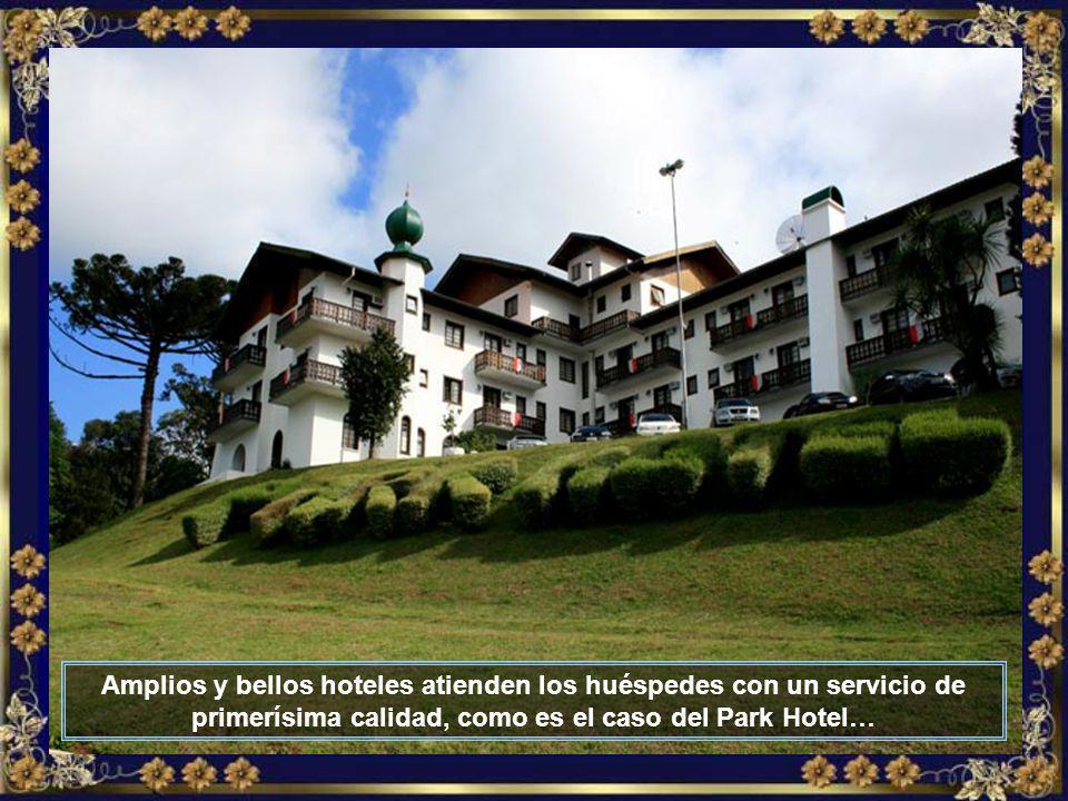 IMG_5932 - TREZE TÍLIAS - PARK HOTEL-700.jpg