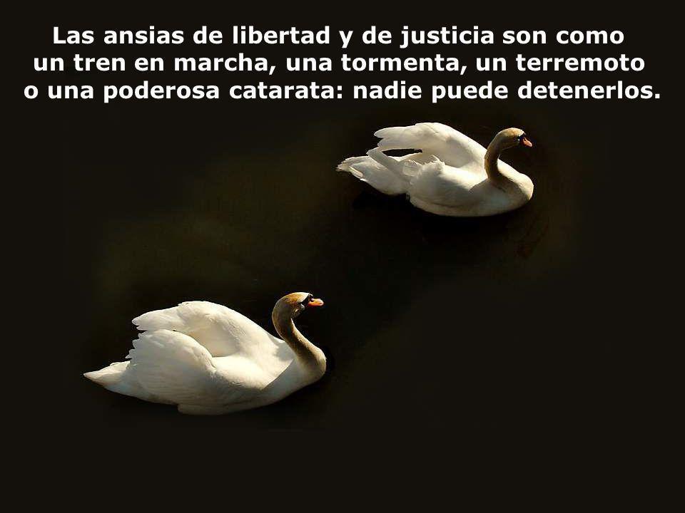 Las ansias de libertad y de justicia son como