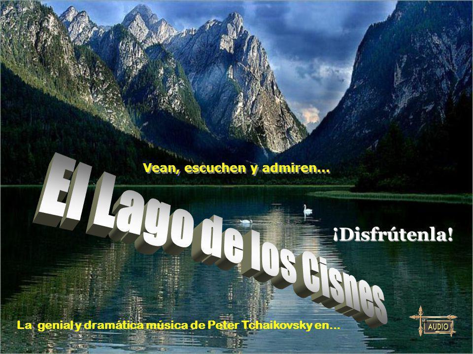 El Lago de los Cisnes ¡Disfrútenla! Vean, escuchen y admiren...
