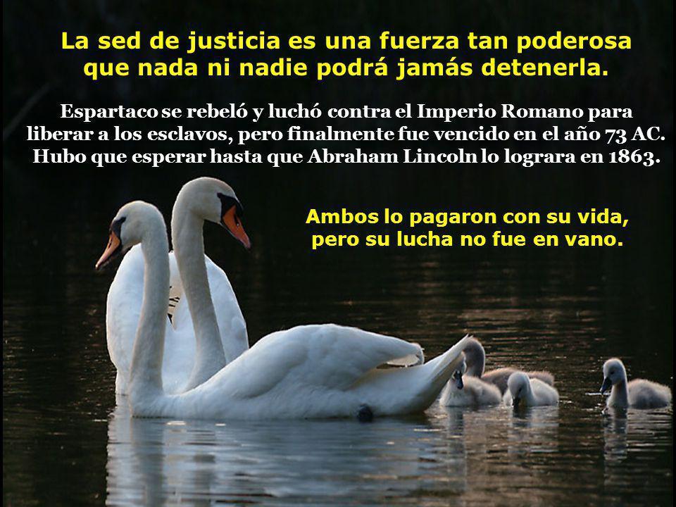 La sed de justicia es una fuerza tan poderosa que nada ni nadie podrá jamás detenerla.