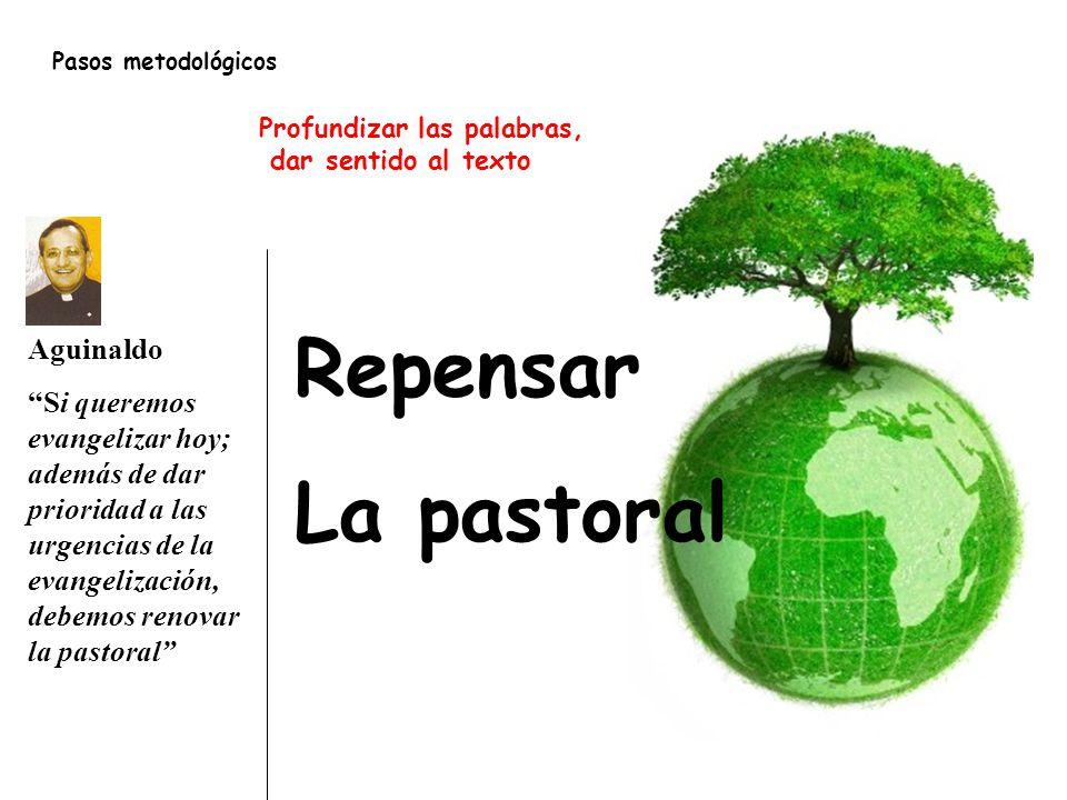 Repensar La pastoral Aguinaldo