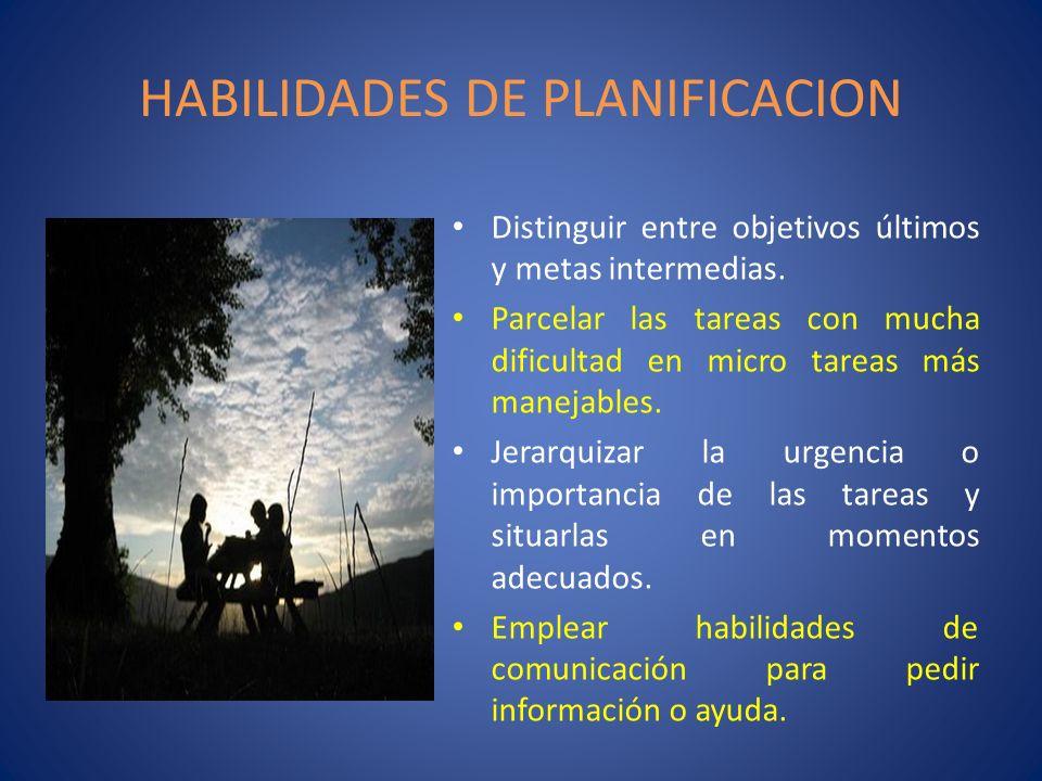 HABILIDADES DE PLANIFICACION