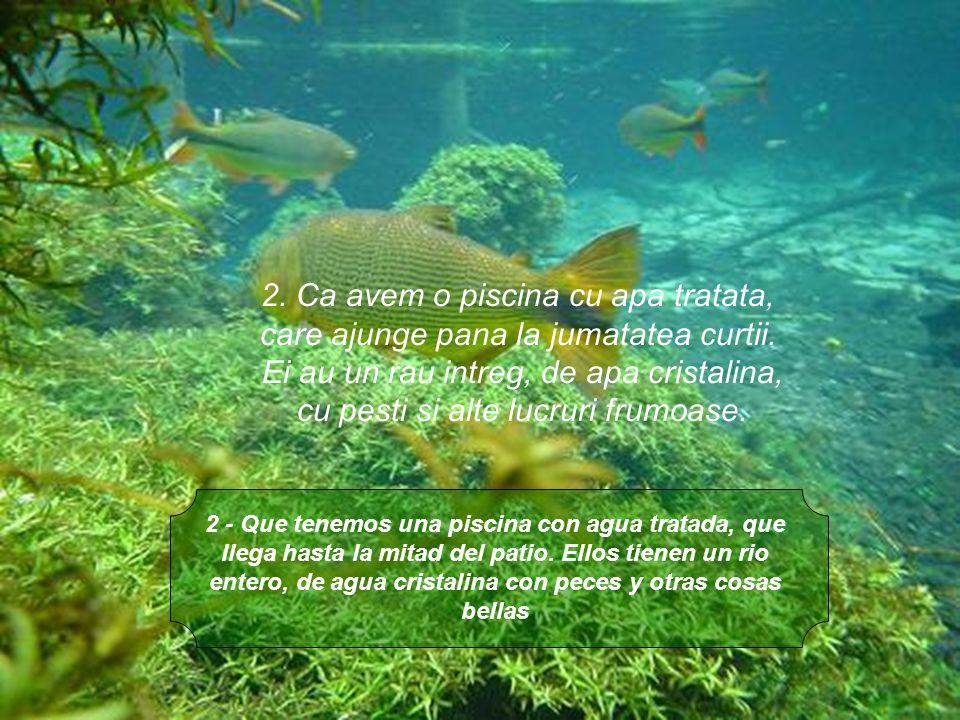 2. Ca avem o piscina cu apa tratata,