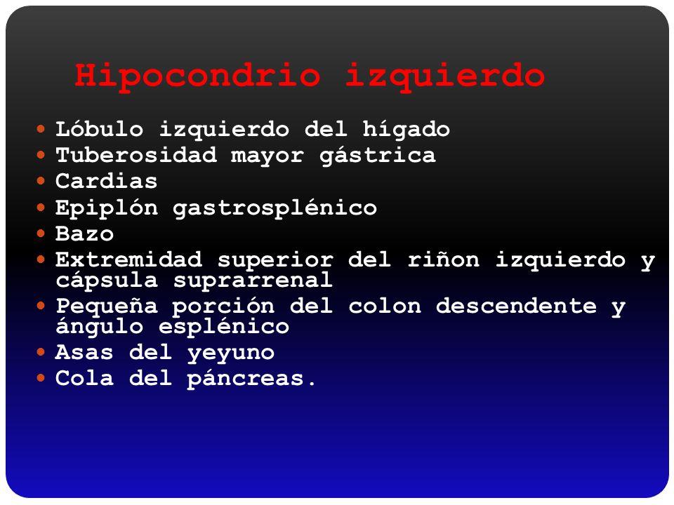 Hipocondrio izquierdo