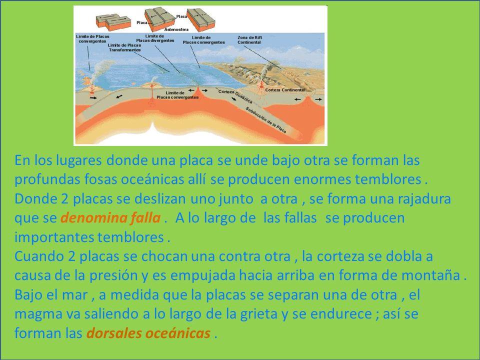 En los lugares donde una placa se unde bajo otra se forman las profundas fosas oceánicas allí se producen enormes temblores .