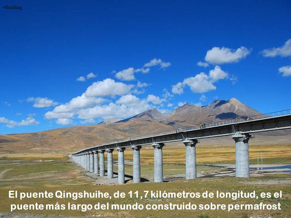 Building El puente Qingshuihe, de 11,7 kilómetros de longitud, es el puente más largo del mundo construido sobre permafrost.