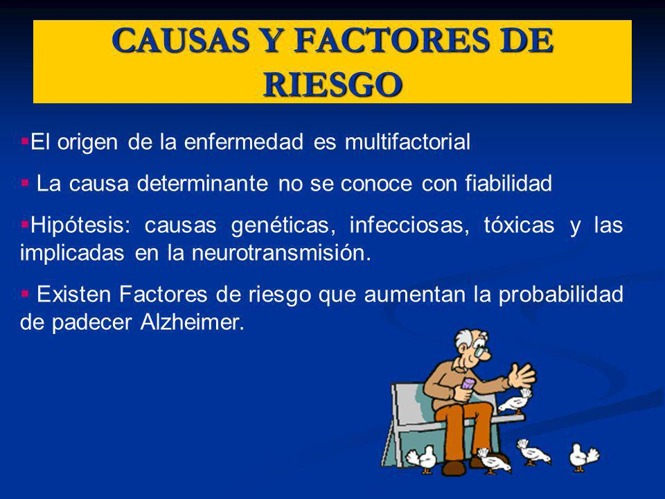 CAUSAS Y FACTORES DE RIESGO