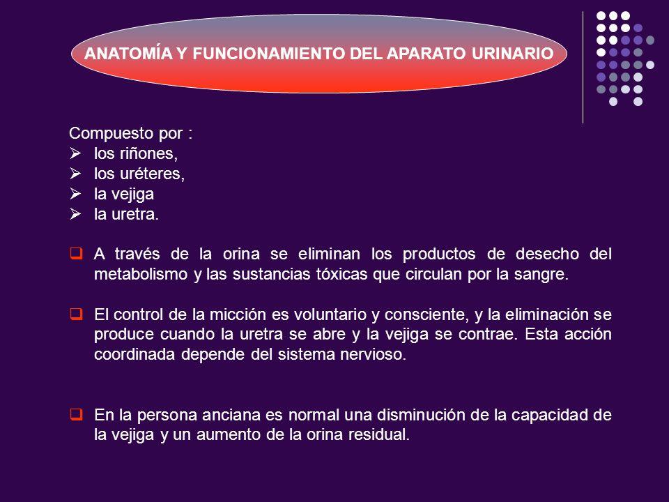 ANATOMÍA Y FUNCIONAMIENTO DEL APARATO URINARIO