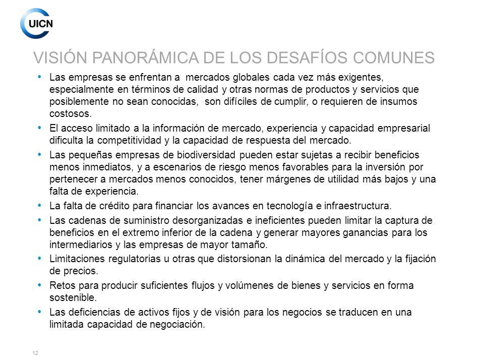 VISIÓN PANORÁMICA DE LOS DESAFÍOS COMUNES