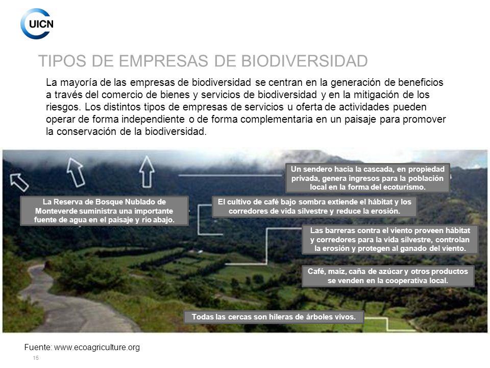 TIPOS DE EMPRESAS DE BIODIVERSIDAD