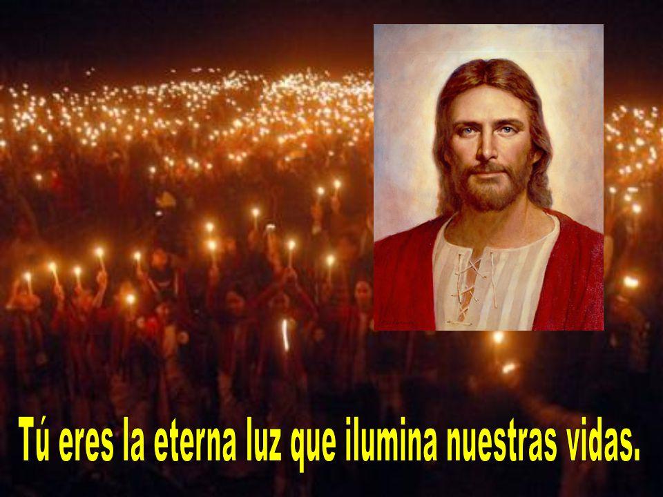 Tú eres la eterna luz que ilumina nuestras vidas.