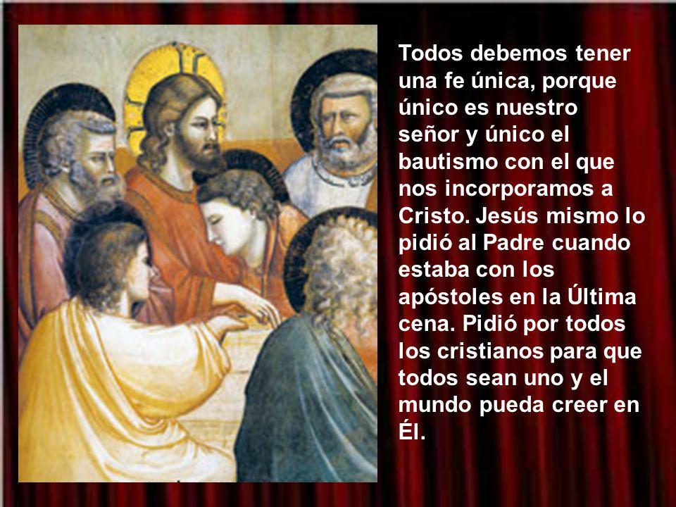 Todos debemos tener una fe única, porque único es nuestro señor y único el bautismo con el que nos incorporamos a Cristo.