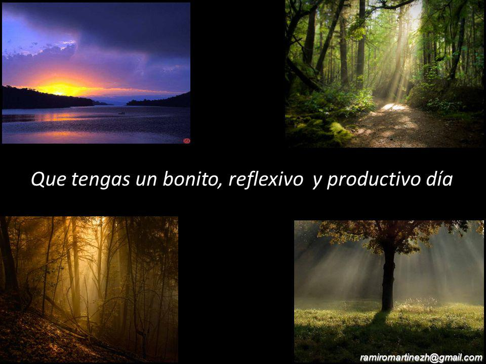 Que tengas un bonito, reflexivo y productivo día