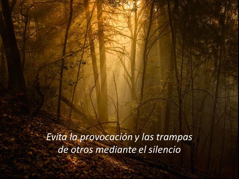 Evita la provocación y las trampas de otros mediante el silencio