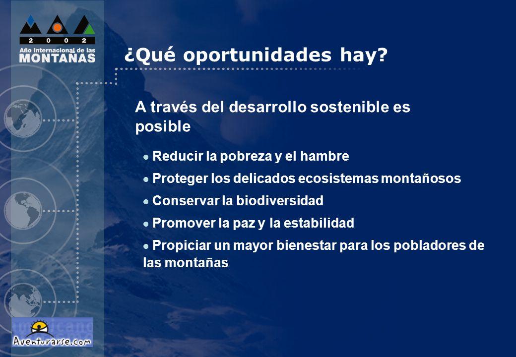 ¿Qué oportunidades hay