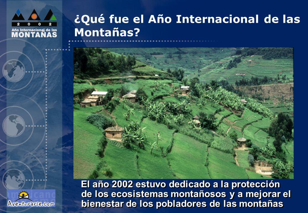 ¿Qué fue el Año Internacional de las Montañas