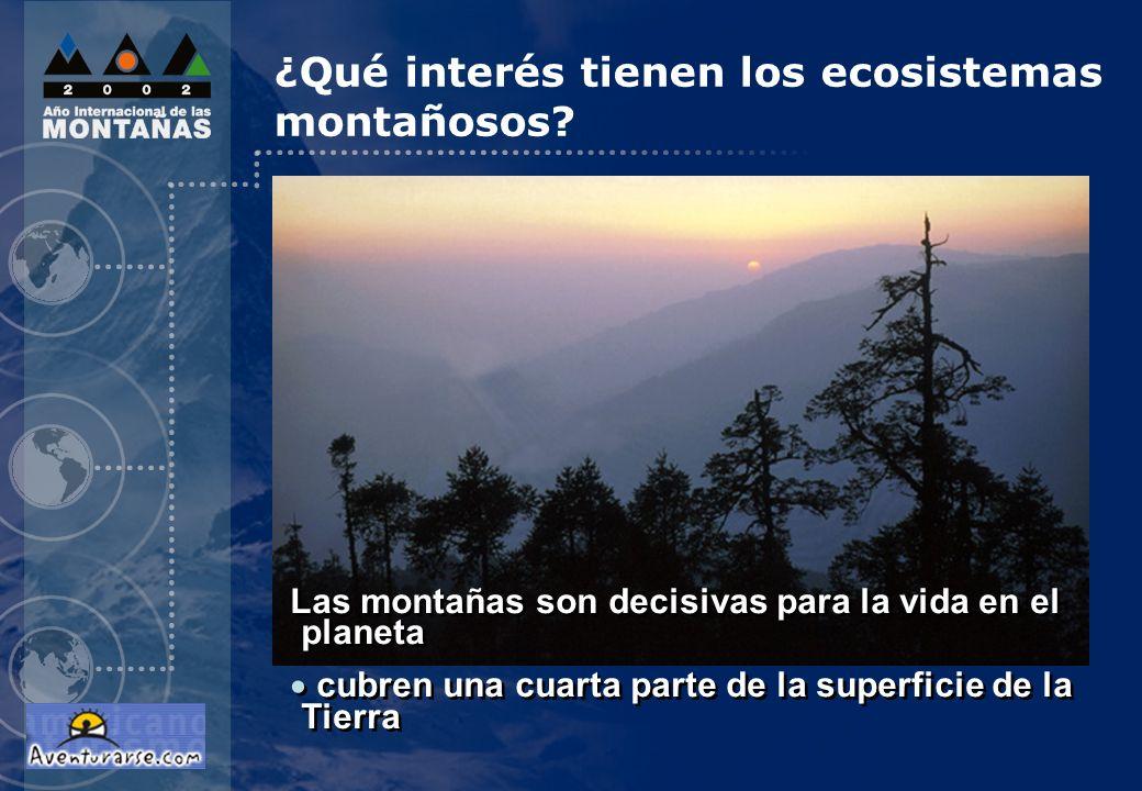 ¿Qué interés tienen los ecosistemas montañosos