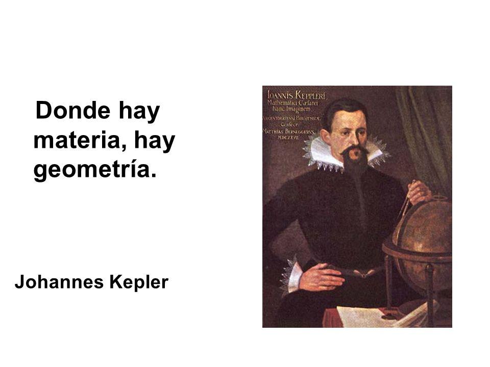 Donde hay materia, hay geometría.