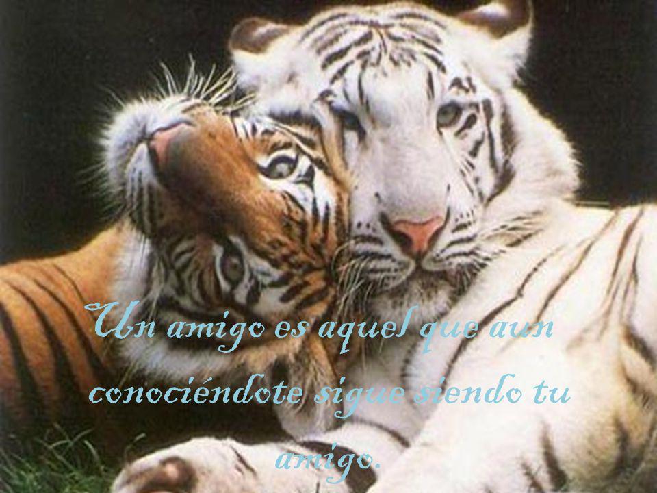 Un amigo es aquel que aun conociéndote sigue siendo tu amigo.