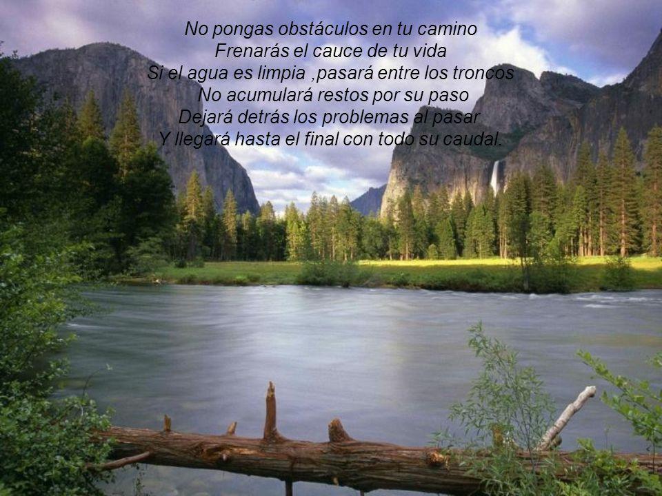 No pongas obstáculos en tu camino Frenarás el cauce de tu vida
