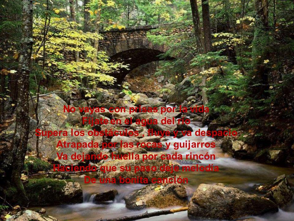 No vayas con prisas por la vida Fíjate en el agua del río