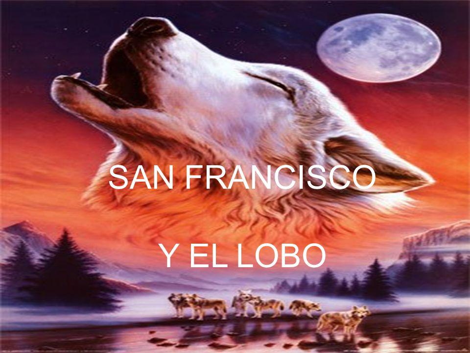 SAN FRANCISCO Y EL LOBO