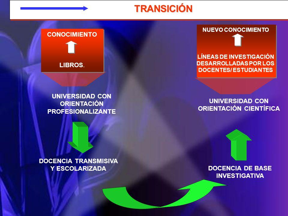 LÍNEAS DE INVESTIGACIÓN DESARROLLADAS POR LOS DOCENTES/ ESTUDIANTES