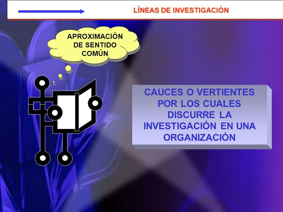 LÍNEAS DE INVESTIGACIÓN APROXIMACIÓN DE SENTIDO COMÚN
