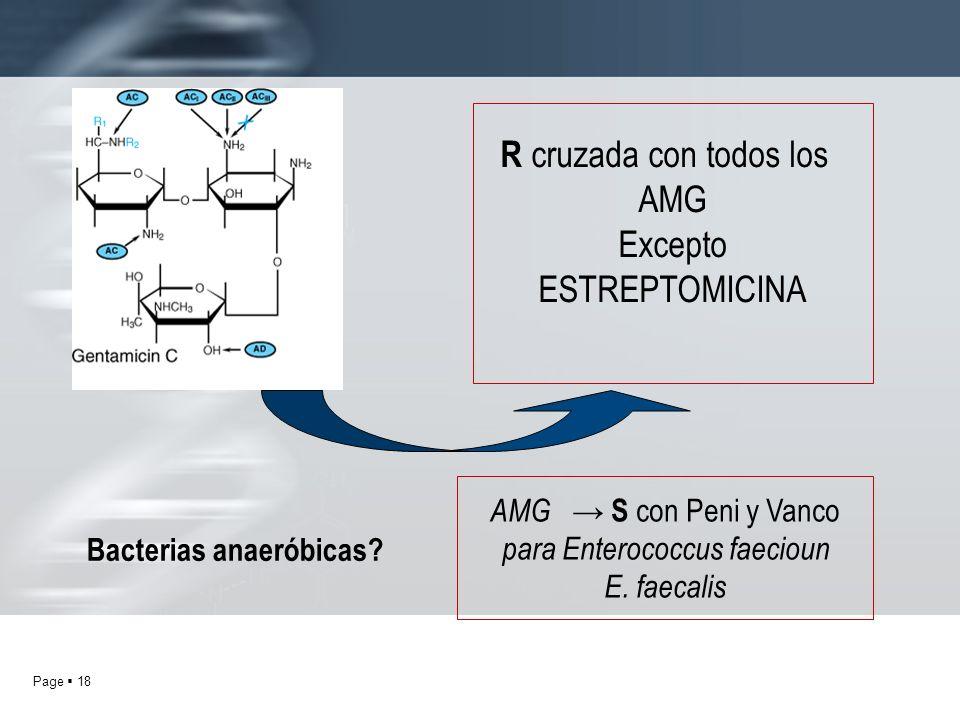 Bacterias anaeróbicas