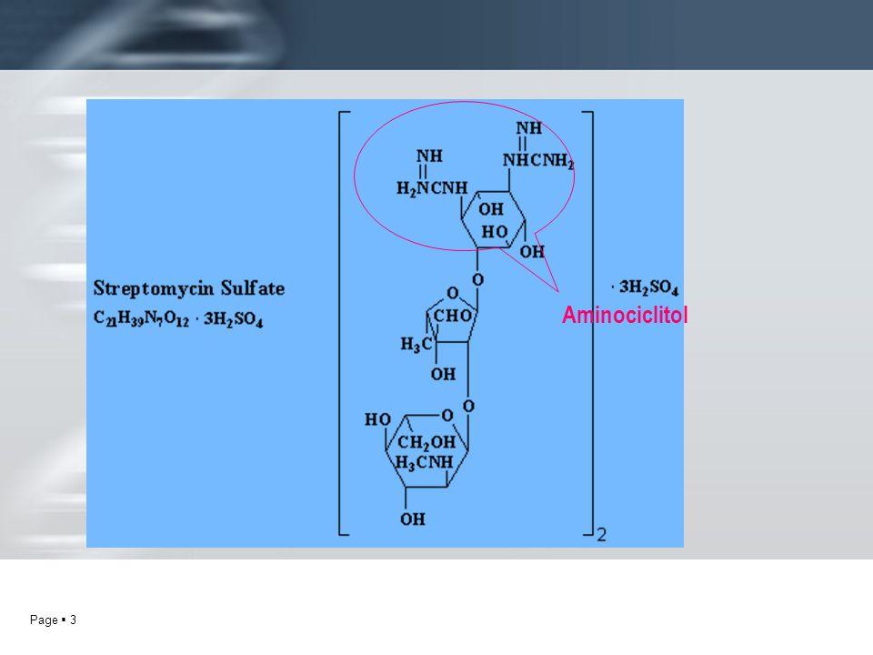 Aminociclitol