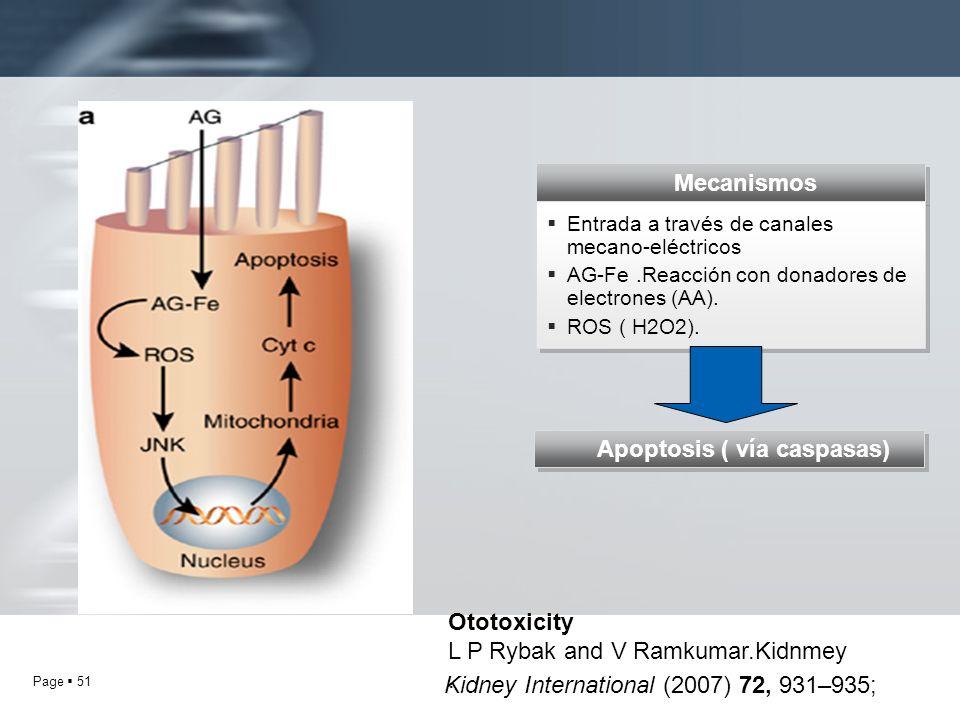 Apoptosis ( vía caspasas)