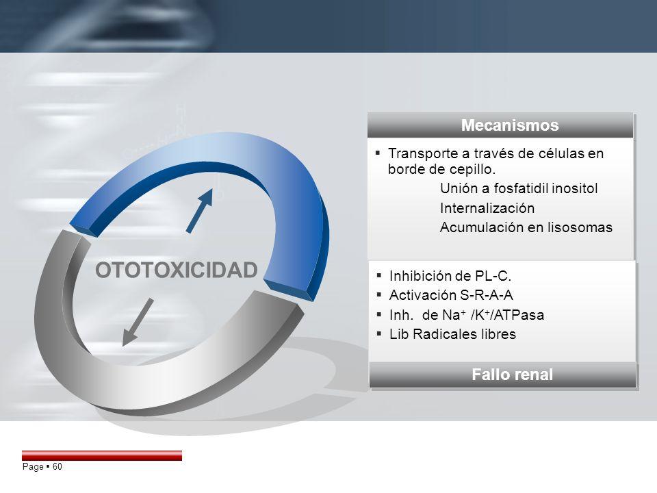 OTOTOXICIDAD Mecanismos Fallo renal