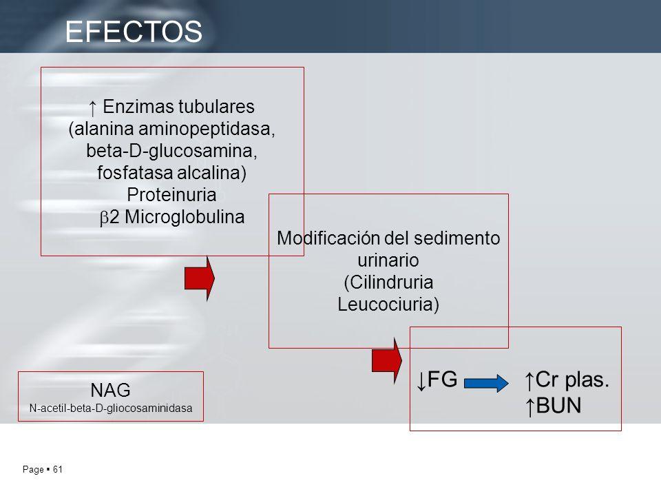 EFECTOS ↓FG ↑Cr plas. ↑BUN ↑ Enzimas tubulares