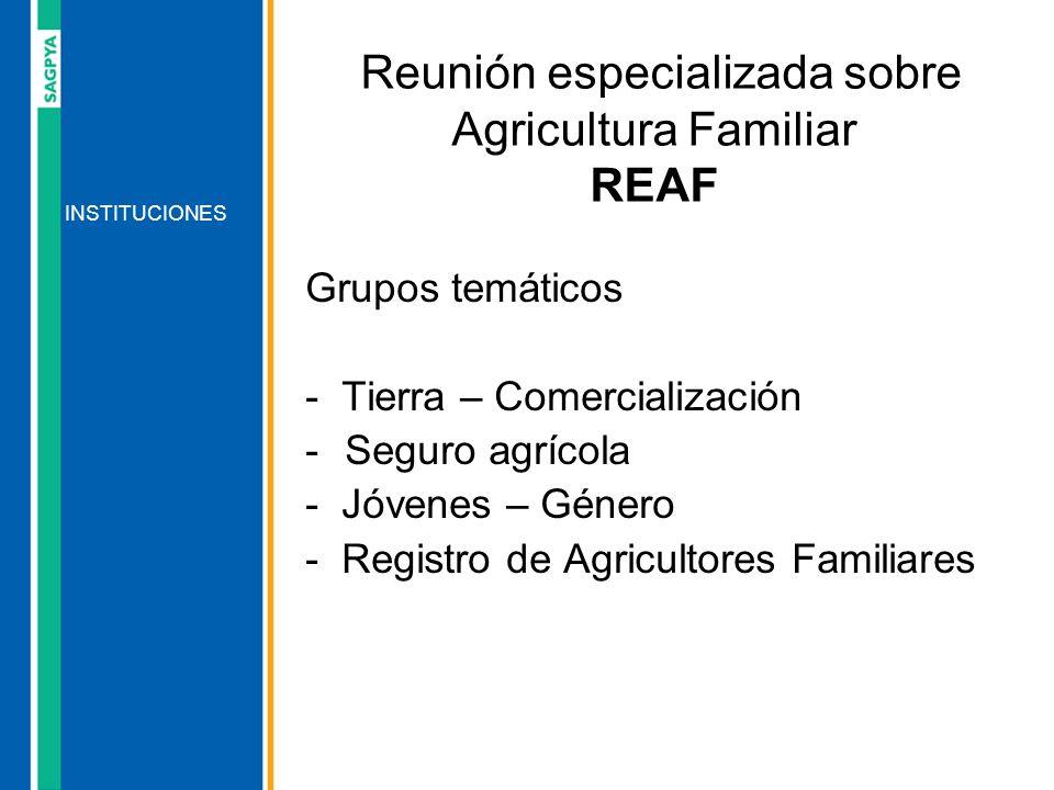 Reunión especializada sobre Agricultura Familiar REAF