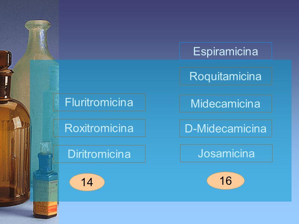 Espiramicina Roquitamicina. Fluritromicina. Midecamicina. Roxitromicina. D-Midecamicina. Diritromicina.