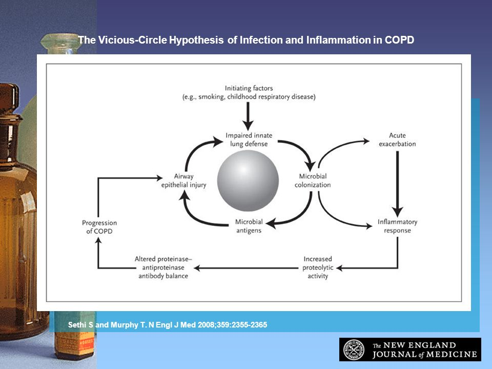 The Vicious-Circle Hypothesis of Infection and Inflammation in COPD