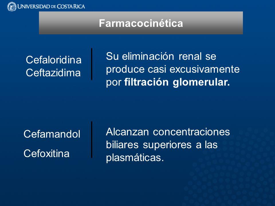 Farmacocinética Cefaloridina Ceftazidima. Su eliminación renal se produce casi excusivamente por filtración glomerular.