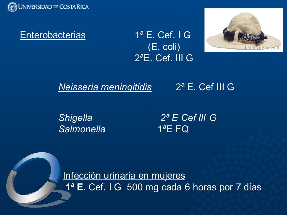 Enterobacterias 1ª E. Cef. I G