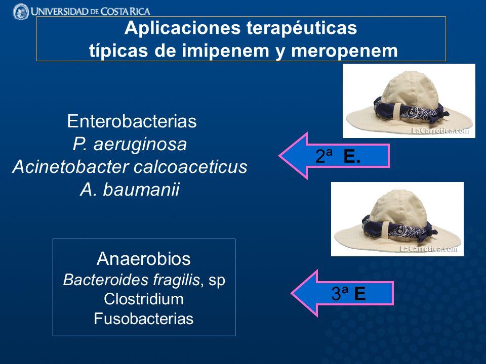 Aplicaciones terapéuticas típicas de imipenem y meropenem