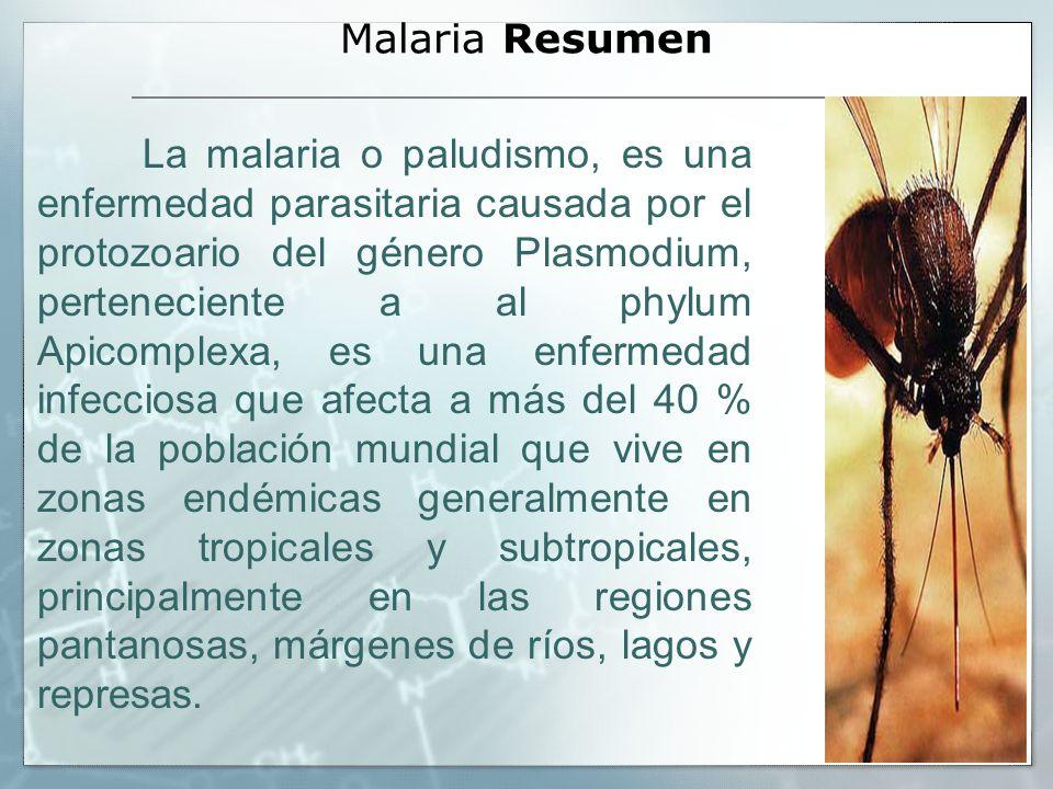 Malaria Resumen