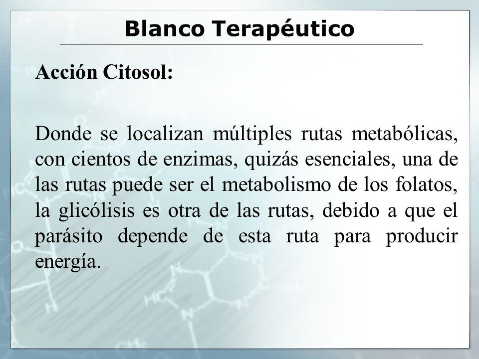 Blanco Terapéutico Acción Citosol: