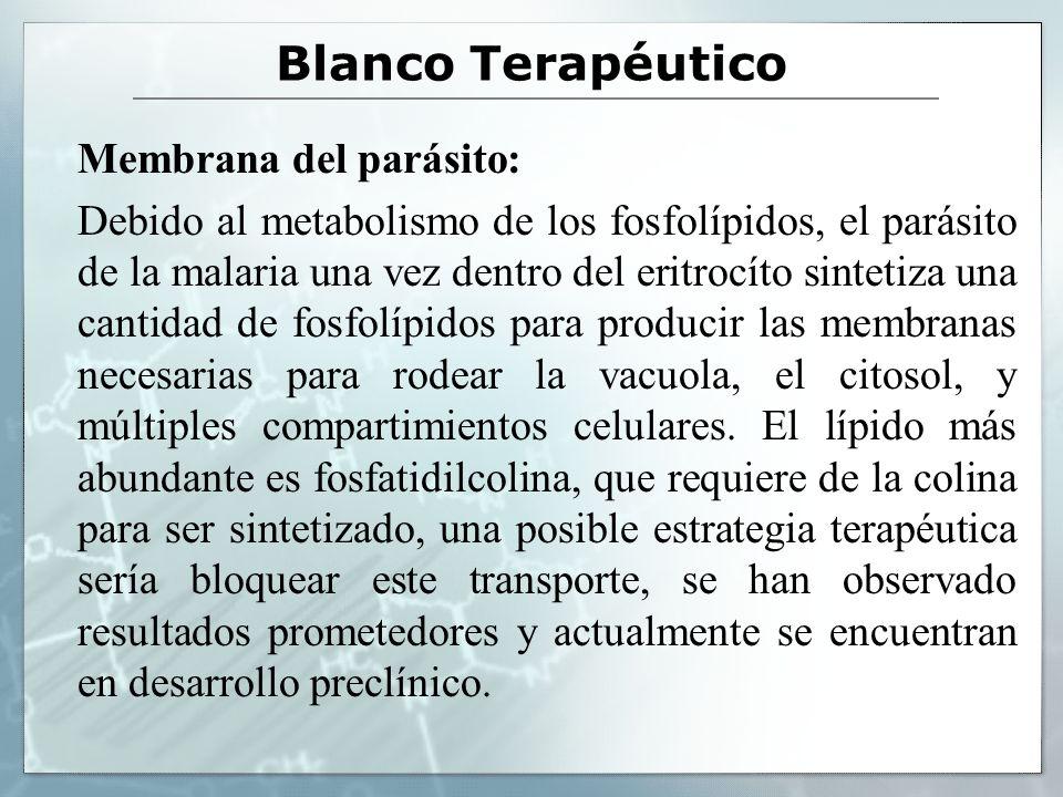 Blanco Terapéutico Membrana del parásito: